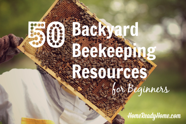 50 Backyard Beekeeping Resources For Beginners