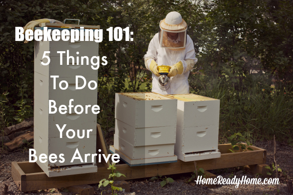 Beekeeping 101: 5 Things To Do Before Your Bees Arrive (Arador)