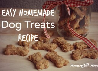 Easy Homemade Dog Treats Recipe